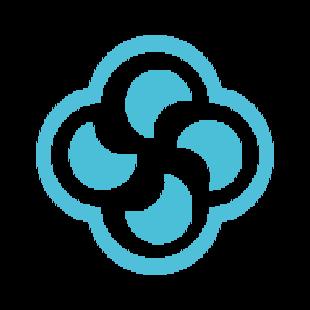 Survin IT Solutions logo