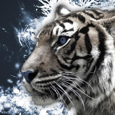 Tiger SEO Marketing logo